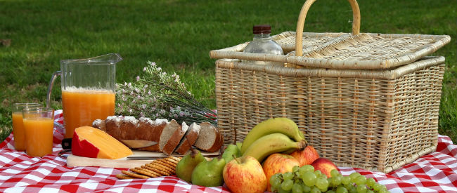 Plan a Picnic for Four for £25